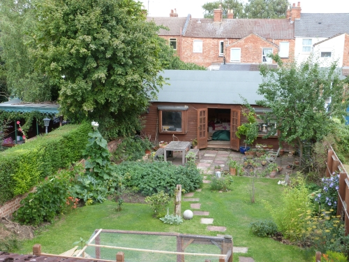 Garden 15th August 2013