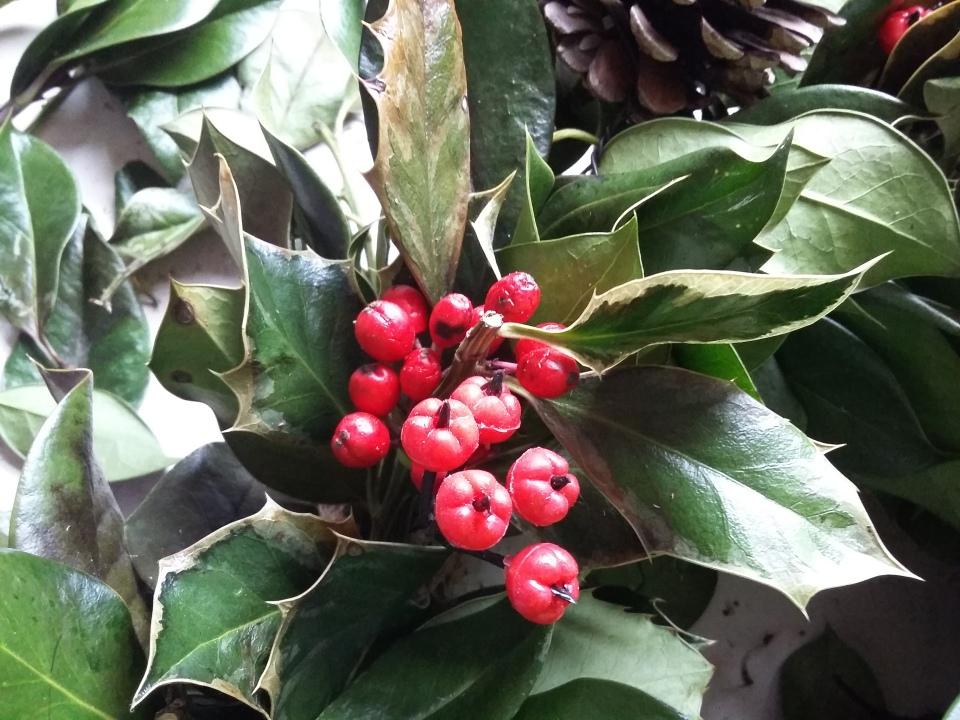wreath-20170107_130333