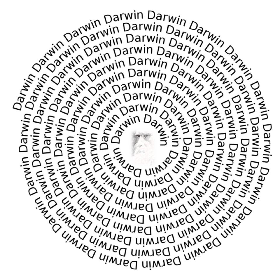 darwin-spiral-final