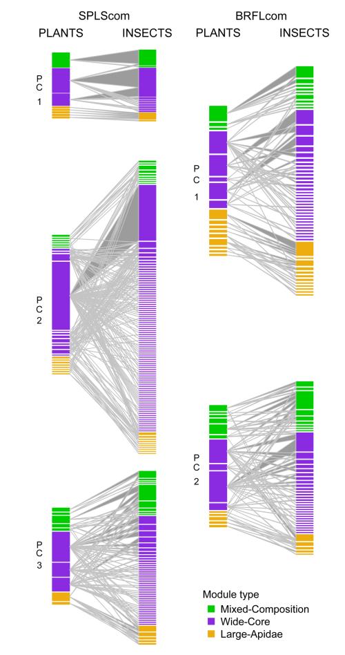 Biella network