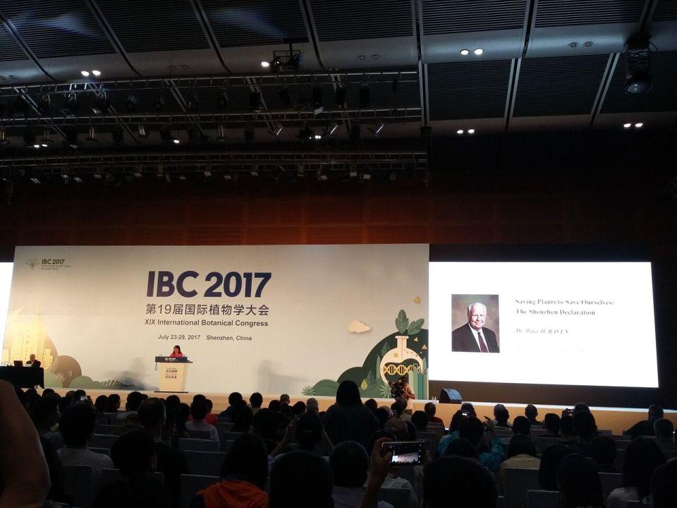 IBC 11