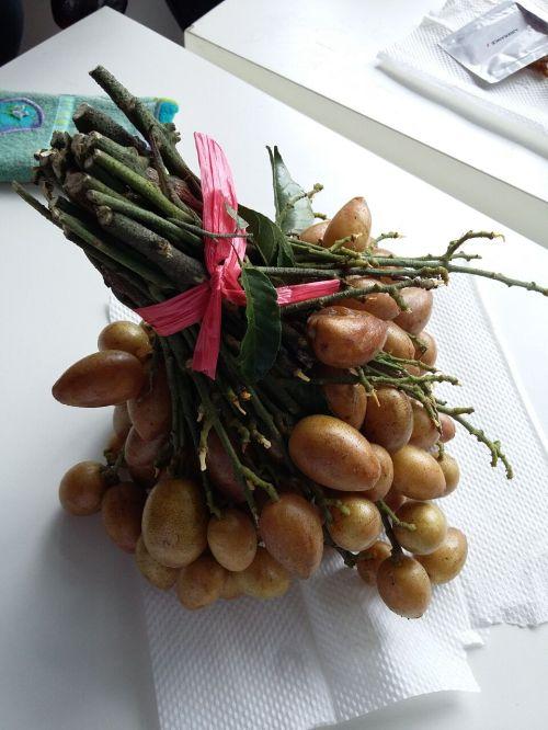 IBC 34 - Fruit.jpg