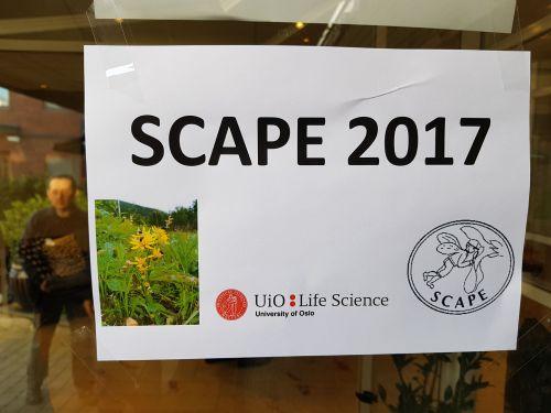 SCAPE1