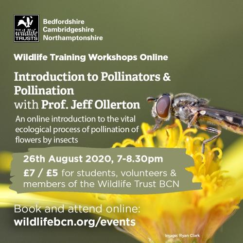 Jeff WT workshop 2020